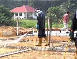 Plinth Protection Anti Termite Treatment