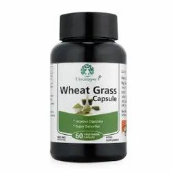 Wheatgrass Ext 500 Mg Wheatgrass Capsule, Packaging Size: 60 Capsule, Packaging Type: Bottle With Label