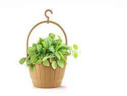 Lilly Basket Pot