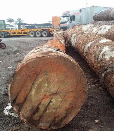 Azobe Wood Okan Tali Dabema Ayous Padouk Movingui
