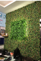Artificial Green Wall Patch