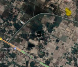 NEFT Agricultural Land Dealing Service, Size/ Area: 12 Bigha, Real Estate