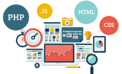 Web Design & Development Service