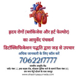Ayurveda Heart Treatment Jaipur