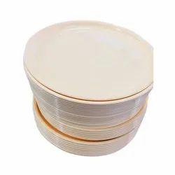 13 Inch Plastic Plate