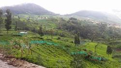 Valley View Plots For Sale In Doddabetta Ooty