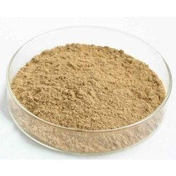 Isoflavones Powder