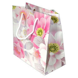 Designer Craft Paper Carry Bag