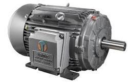 Crompton Three Phase TEFC Squirrel Cage Induction Motor, Power: <10 kW