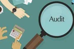 Company Audit / Statutory Audit