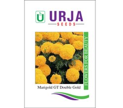 Marigold  Gt Double Gold Seeds