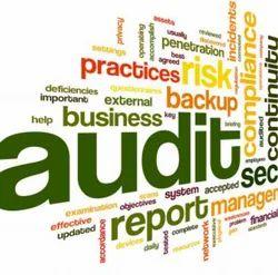 Audits Services