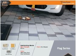 Cement Rectangular Flag Series Paving Blocks