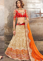 Bridal Lehenga Choli BL3