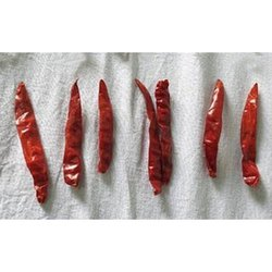 Without Stem Guntur Dry Red Chilli