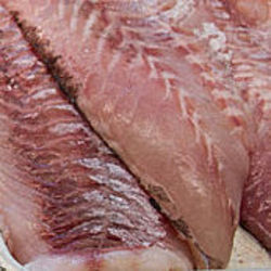 Seafood in Thanjavur - Latest Price & Mandi Rates from Dealers in