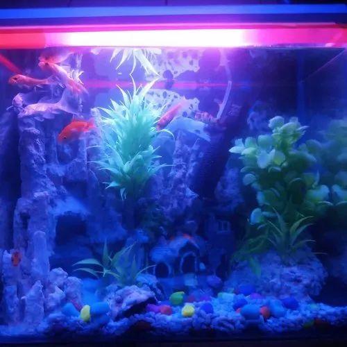 Aquarium Sand Waterfall At Rs 3500 Piece Garia Kolkata Id 21534181330