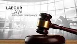 Statutory Compliance Consultant Delhi