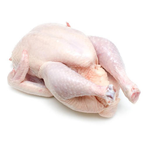 Fresh Whole Chicken Without Skin, Packaging Type -8143