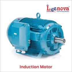 Leenova Induction Motor