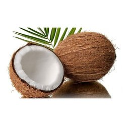A Grade Solid Husked Coconut, Packaging Size: 50 Kg