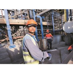 Contract Labour Supplier Services in Local