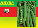 Green Mayur-early Pea Seeds
