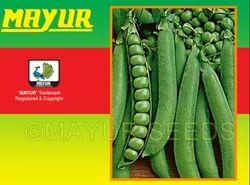 Green Mayur-Early Pea Seeds