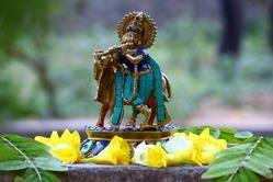 Krishna Ji Statue