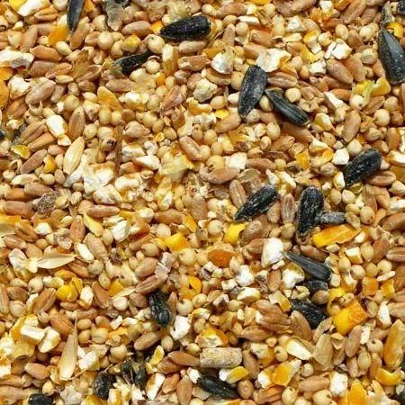 Shri Gurusiddaruda Organic Poultry Feed, Pack Size: 50 Kg, Packaging Type:  Bag, Rs 15 /kilogram | ID: 15968207173