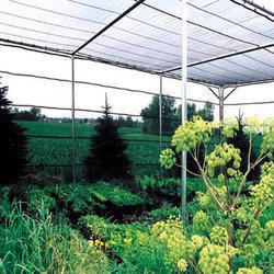Nursery Agro Shade Net