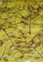 Salpatta / Multicolour Film BOPP 8 micron Jindal