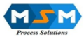 MSM Process Solutions Private Limited