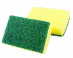 Sponge Scrub Pad