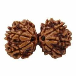 10 Mukhi Gaurishankar 32.27mm Best price Energize AAA  quality Certified Bead in Adambakkam 10 Mukhi