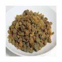 Aromatika Incense Resin Myrrh