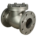 Ipc Stainless Steel Check Valves