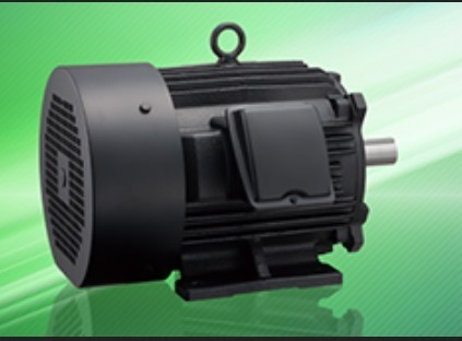 Low Voltage Three Phase Induction Motor