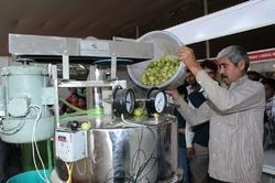 Amla Juice Processing Machinery