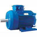 Bharat Bijlie Induction Motor