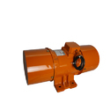 Two Phase Vibrating Feeder Motor