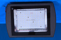 100 Watts Flood Light
