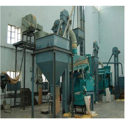 Seed Cleaning & Shorting Plant