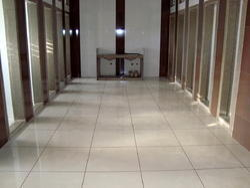 Tile Joint Filling Service, Minimum Floor Area: 100 Sq Ft