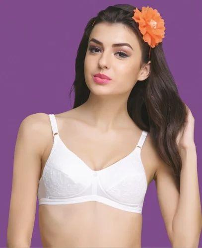 e8af3a0b988 Groversons Paris Beauty Sheena Chikan Bra - Groversons Apparel ...