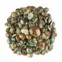 Natural Tibetan Turquoise Plain Cabochon in Assortment Gemstone