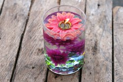 Rose Flower (S) Water Floating Candles