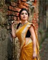 Fancy Linen Digital Print Saree