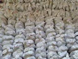 Oyster Mushroom Seeds