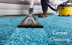Clothes/Apparels/Laundry Service Washing Carpet Cleaning Services